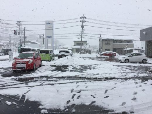 大雪です*:.。. .。.:*・゜゚・*