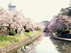 4月本店☆スプリング フェア!