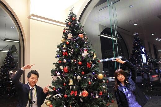 【本店】クリスマスツリー登場&今週のイベントは・・・