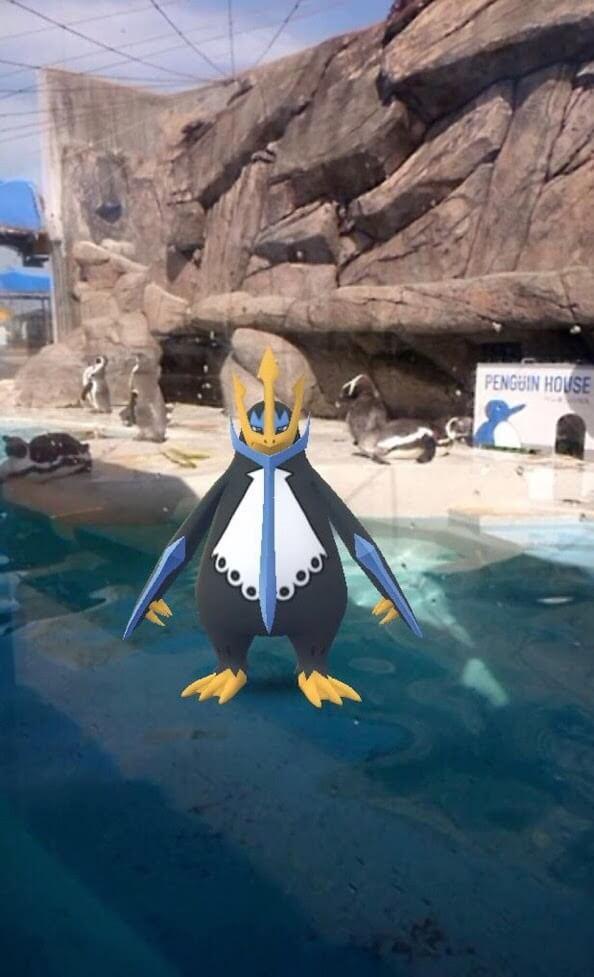 ペンギン ポケモン